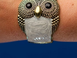 [object object] - Product Photography Jewelry 10 500x750 320x240 c - Product Photography – Owl Jewelry