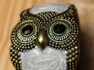 [object object] - Product Photography Jewelry 11 500x750 320x240 c - Product Photography – Owl Jewelry