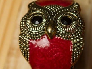 [object object] - Product Photography Jewelry 12 500x750 320x240 c - Product Photography – Owl Jewelry