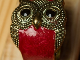 [object object] - Product Photography Jewelry 13 500x750 320x240 c - Product Photography – Owl Jewelry