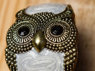 [object object] - Product Photography Jewelry 3 500x750 320x240 c - Product Photography – Owl Jewelry