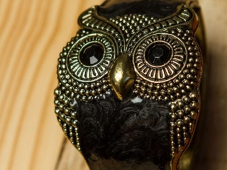 [object object] - Product Photography Jewelry 4 500x750 320x240 c - Product Photography – Owl Jewelry