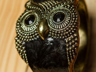 [object object] - Product Photography Jewelry 7 500x750 320x240 c - Product Photography – Owl Jewelry