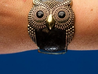 [object object] - Product Photography Jewelry 8 500x750 320x240 c - Product Photography – Owl Jewelry