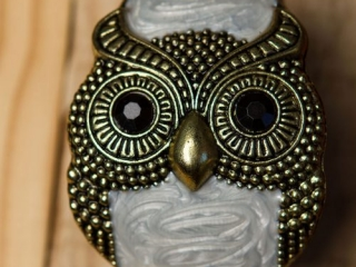 [object object] - Product Photography Jewelry 9 500x750 320x240 c - Product Photography – Owl Jewelry